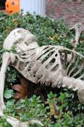 Full-sized skeleton in the bushes