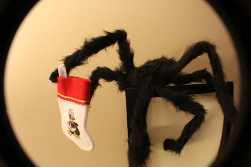 blog_spider