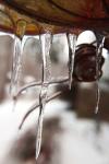 b_ice