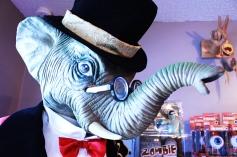 elephant_wp