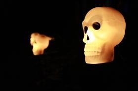 skullLight