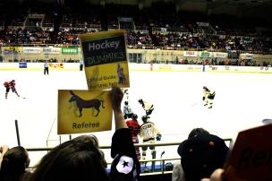 hockeyDummies