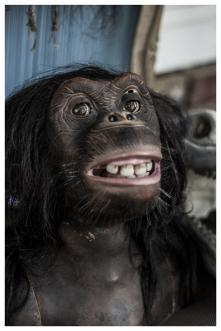 monkey_frame